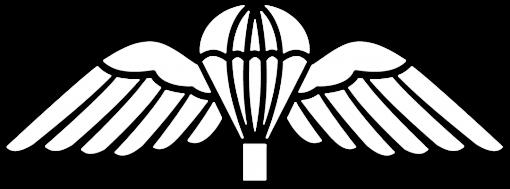British Para Wings White